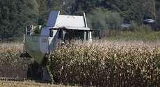 Setor agro é um dos mais atingidos pelo novo texto da reforma tributária